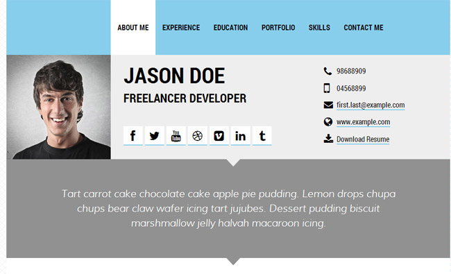 30  best resume  u0026 cv html templates for personal  business