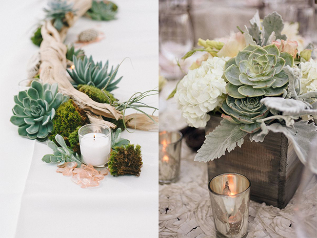 Succulent Wedding Centerpieces.65 Great Eye Popping Succulent Photos For Wedding Ideas