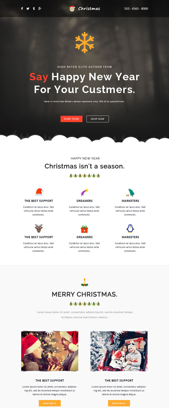 25 best christmas email newsletter templates 2016 designmaz for Christmas newsletter design ideas
