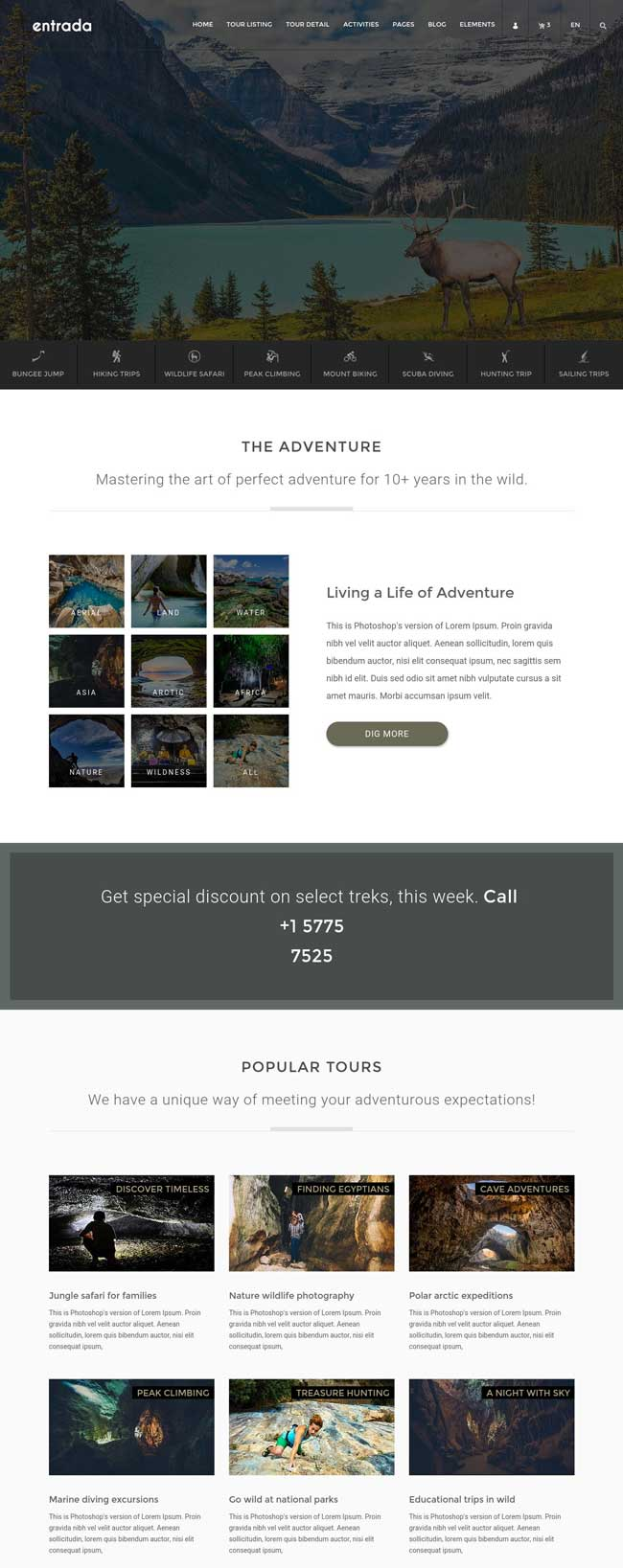 20+ Best HTML Responsive Booking Templates for Travel, Hotel Booking ...