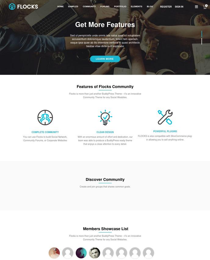 25+ Best Responsive BuddyPress Themes 2017 - DesignMaz